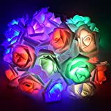 Gaddrt Kreativ 20 USB Lade LED Fenster Vorhang-Lichter String Rose Lamp House Party Mauer Wohnzimmer Arbeitszimmer Dekor Geschenk (Mehrfarbig)