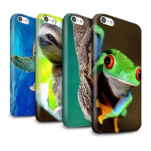 STUFF4 Glanz Snap-On Hülle / Case für Apple iPhone X/10 / Eidechse Muster / Wilde Tiere Kollektion Multipack Exotisch