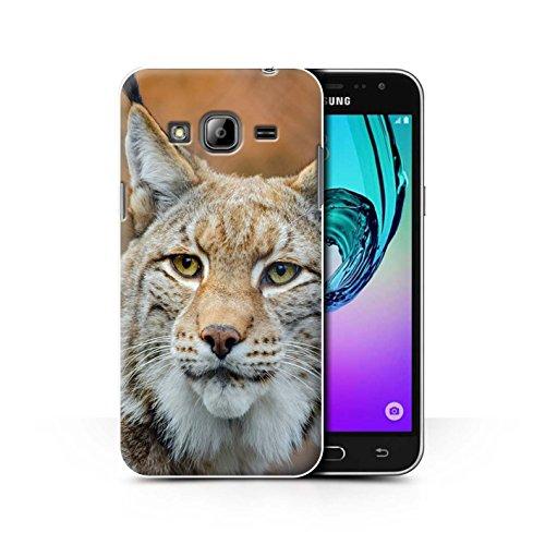 coque-de-stuff4-coque-pour-samsung-galaxy-j3-lynx-bobcat-design-animaux-amerique-nord-collection