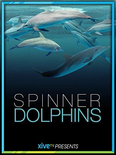 Spinner Dolphins [OV] -