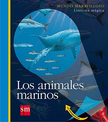 los-animales-marinos-mundo-maravilloso