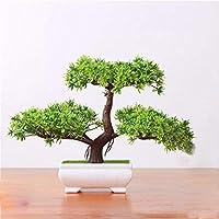 Suchergebnis Auf Amazonde Für Wurzel Baum Sport Freizeit