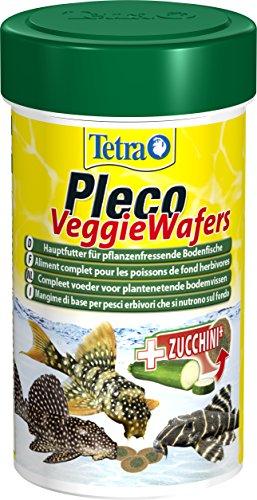 Tetra Pleco Veggie Wafers (Hauptfutter für pflanzenfressende Bodenfische, Alleinfutter mit mineralreicher Zucchini für verbesserte Vitalität), 100 ml Dose