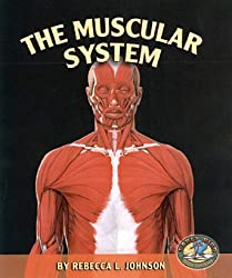 The Muscular System (Early Bird Body Systems) by Rebecca L Johnson (2005-05-01)