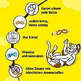 Dreamies Klassiker Katzensnack Selection Box mit Huhn, Käse, Rind und Lachs - 7