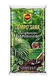 COMPO SANA® Grünpflanzen- und Palmenerde 20 L (CGR 20 P)