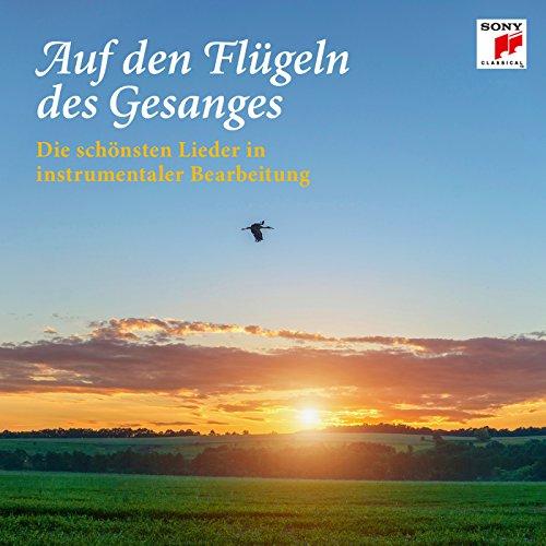 Lieder eines fahrenden Gesellen, Arr. for Cello and Piano: II. Ging heut Morgen übers Feld (Auf Flügeln Den Liedes Eines)