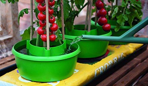 Garland Plante Halos Vert Pack 3