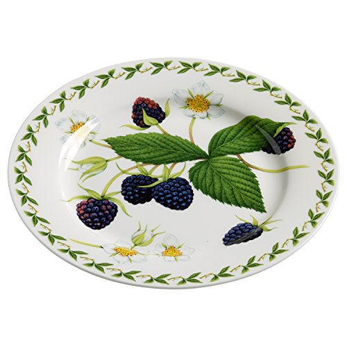 Maxwell & Williams pb8209 Orchard Fruits Assiette Mûre, 20 cm, boîte Cadeau, Porcelaine, Multicolore