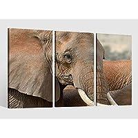 Leinwandbild 120x80cm auf Keilrahmen schwarz,weiß,grau,Elefant,baby,Rüssel
