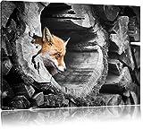 schöner Fuchs im Baumstamm schwarz/weiß Format: 120x80 auf Leinwand, XXL riesige Bilder fertig gerahmt mit Keilrahmen, Kunstdruck auf Wandbild mit Rahmen, günstiger als Gemälde oder Ölbild, kein Poster oder Plakat