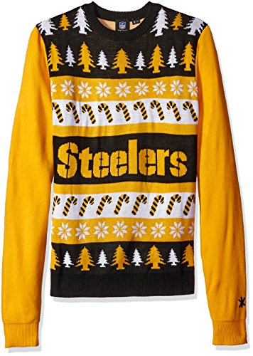 Forever Collectibles NFL Wordmark Pullover xl Team