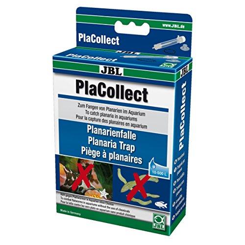 JBL Planarienfalle gegen Plattwürmer; PlaCollect; 61455