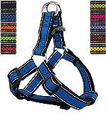 DDOXX Hundegeschirr Reflektierend Step-In Air Mesh | für große, mittelgroße, Mittlere & Kleine Hunde | Geschirr Hund | Katze | Brustgeschirr | Softgeschirr | Blau, S - 2,0 x 45-63 cm