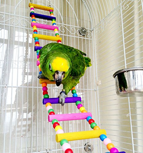 Escalera madera, juguete pájaros, loros, periquitos