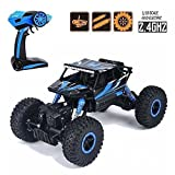 #1: higadget™ Dirt Drift Waterproof Remote Controlled Rock Crawler RC Monster Truck, Four wheel Drive, 1:18 Scale 2.4 GHZ