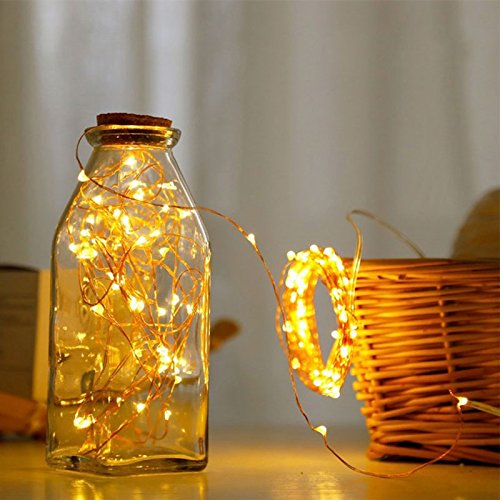 AtneP 100 LED Copper Wire Fairy Lights- 10m - USB Powered (100 LED Copper Wire Warm White)