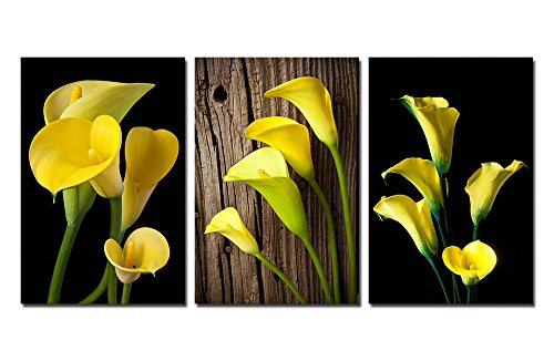 Adorn Art 3 Panels Stretched and Framed High Definition Yellow Calla Pictures Photo Prints on Canvas Paintings, Modern HD Giclee Walls Artwork Abstract for Home Wall Art Decor Ready to Hang (16''x20'') by Adorn Art High Definition Panel