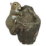 Best Gifts & Decor Garden Decors - Wonderland Squirrel Tree Hanger with Bird Feeder Review