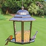 LFF.FF Mangiatoia Per Uccelli All'aperto Mangiatoie Per Uccelli Cibo Per Uccelli Mangiatoia Per Mangimi Per Uccelli Prodotto All'aperto Giardino Comunità Balcone Guida Di Uccelli