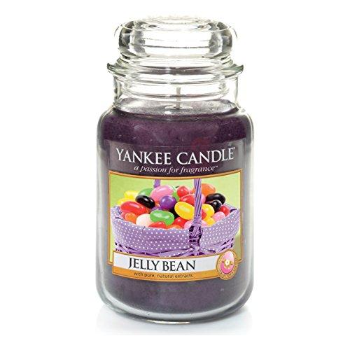 Yankee Candle Duftkerze Housewarmer Jelly Bean (623g)