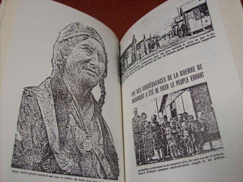 Un camp pour les Tsiganes et les autres (Montreuil Bellay 1940-1945)