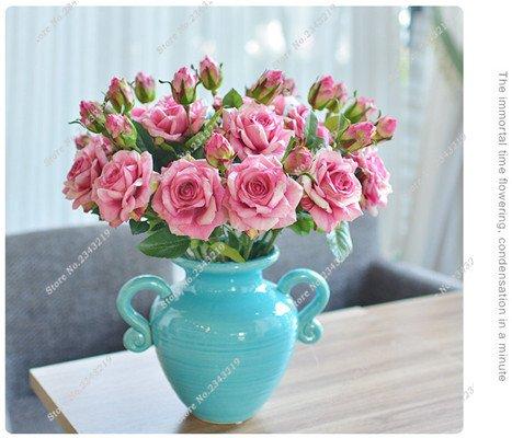 Exotique Miniature Bonsai Fleur Rose Rosas Graine Bricolage Jardin Maison Ménage et embellissant de purification d'air 110 Pcs/Sac 22