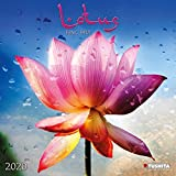 Lotus Feng Shui 2020: Kalender 2020 (Mindful Edition) -