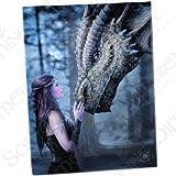 Fantastisches Anne Stokes Design - Once Upon A Time - einmal – eine gotische Fee mit Drache - Leinwand Bild auf Bild-Wand-Plakette / Wand Kunst