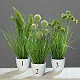 Grasbusch Gras Ziergras Kunstpflanze Dekopflanze H 38 cm 56728-01 getopft F31 (Modell 2)