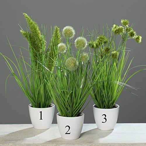 Grasbusch Gras Ziergras Kunstpflanze Dekopflanze H 38 cm 56728-01 getopft F31 (Modell 3)