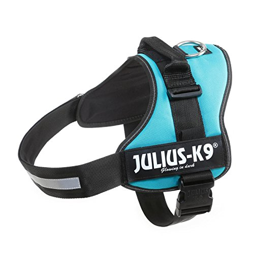 julius-k9-162am3-powerharness-size-3-aquamarine