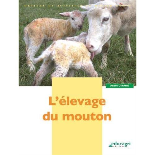 L'élevage du mouton