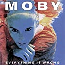 Everything Is Wrong [Vinyl LP]