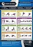 Boule d'exercice Gym Poster | Full Core entraînement | Améliore la résistance d'entraînement | laminé Gym & Home Poster | en ligne gratuit Video Training support | Améliore la Personal Fitness, Laminated (A3)...
