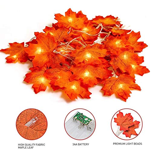 Tiisen 20 Stück Herbstgirlande,Ahornblatt Lichterketten,herbstdekoration Garland für Erntedankfest Herbstdeko Hochzeit Dekoration Weihnachtsbeleuchtung
