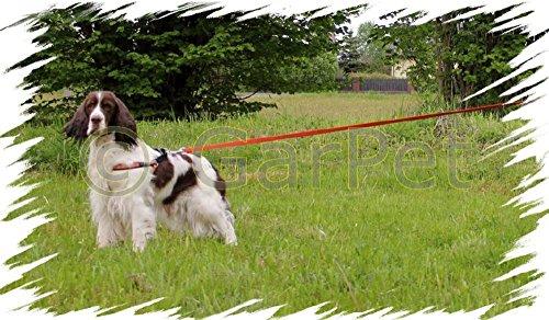 Hunde Schleppleine gummiert Fährtenleine 5m 10m Leine Suchleine Ausbildungsleine (orange, 5m 2.0cm)