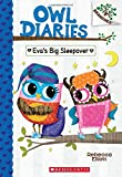 Eva's Big Sleepover (Owl Diaries, Band 9)