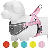 Blueberry Pet New Soft & Comfy 3M Reflective Strips Padded Dog Harness Vest, Chest Girth 52cm-66cm, Pink, Nylon Adjustable Training Harnesses for Dogs