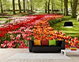 Fototapete 3D Effekt Tapete Romantisch Und Warmen Holland Tulip Blumengarten Fresken Vliestapete 3D Wallpaper Moderne Wanddeko Wandbilder