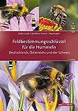 ISBN 3494017875