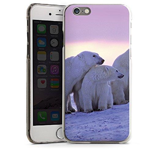 Apple iPhone 5s Housse étui coque protection Ours polaire Ours polaires Ours CasDur transparent