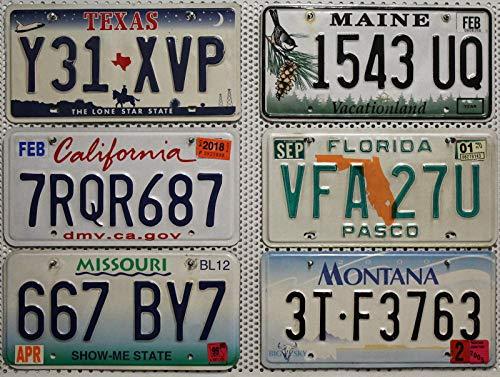 6 Kennzeichen SET/LOT # US Nummernschilder FLORIDA + MISSOURI + MAINE + TEXAS + KALIFORNIEN + MONTANA Blechschilder # USA Auto - Schilder (Plate Missouri License)