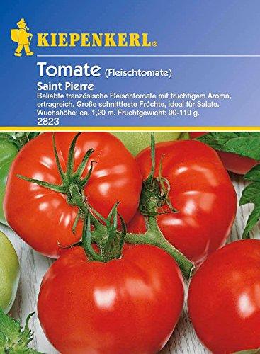 Tomatensamen - Tomate Saint Pierre ( Fleischtomate ) von Kiepenkerl
