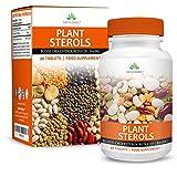 Esteroles Vegetales - Estanoles 800mg - Bajan el Colesterol un 20% Probado Científicamente - Suplemento Máxima Concentración - Hombres y Mujeres - Apto Vegetarianos - 90 Tablets de Earths Design