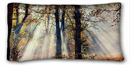 Custom (Tiere Katze B W Foto mordashka Wolle schläft) Custom Baumwolle & Polyester Weich Rechteck Kissen Schutzhülle 50,8x 91,4cm (eine Seite) geeignet für full-bed pc-bluish-20934, Polyester-Mischgewebe, Muster 10, European -