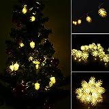 Tannenzapfen Lichterkette Batteriebetriebene 20 LED String Lichterketten Dekorative Lichter 2M Warmweiß Für Indoor Dekoration Garten/Hochzeit/Weihnachten