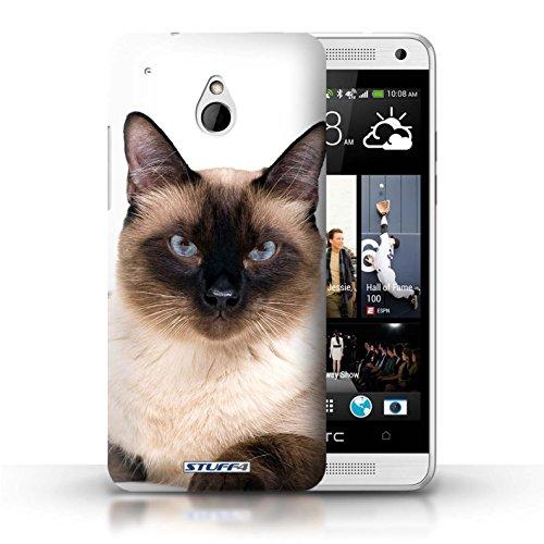 Kobalt® Imprimé Etui / Coque pour HTC One/1 Mini / Peterbald conception / Série Espèces de chats Siamois