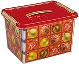 SUNWARE q-line-box - 22 litres avec décoration boules de noël pour 36 x 400 x 300 180 mm (blanc/argent)...