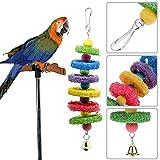 Broadroot - Accessorio in luffa per uccellini, pappagalli e roditori, giocattolo oscillante da masticare e mordere, decorativo per la gabbia
